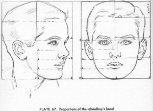 Proportions of a boy's head by Andrew Loomis.