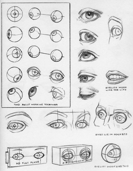 eye Sketches by Andrew Loomis