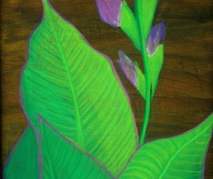 canna painting